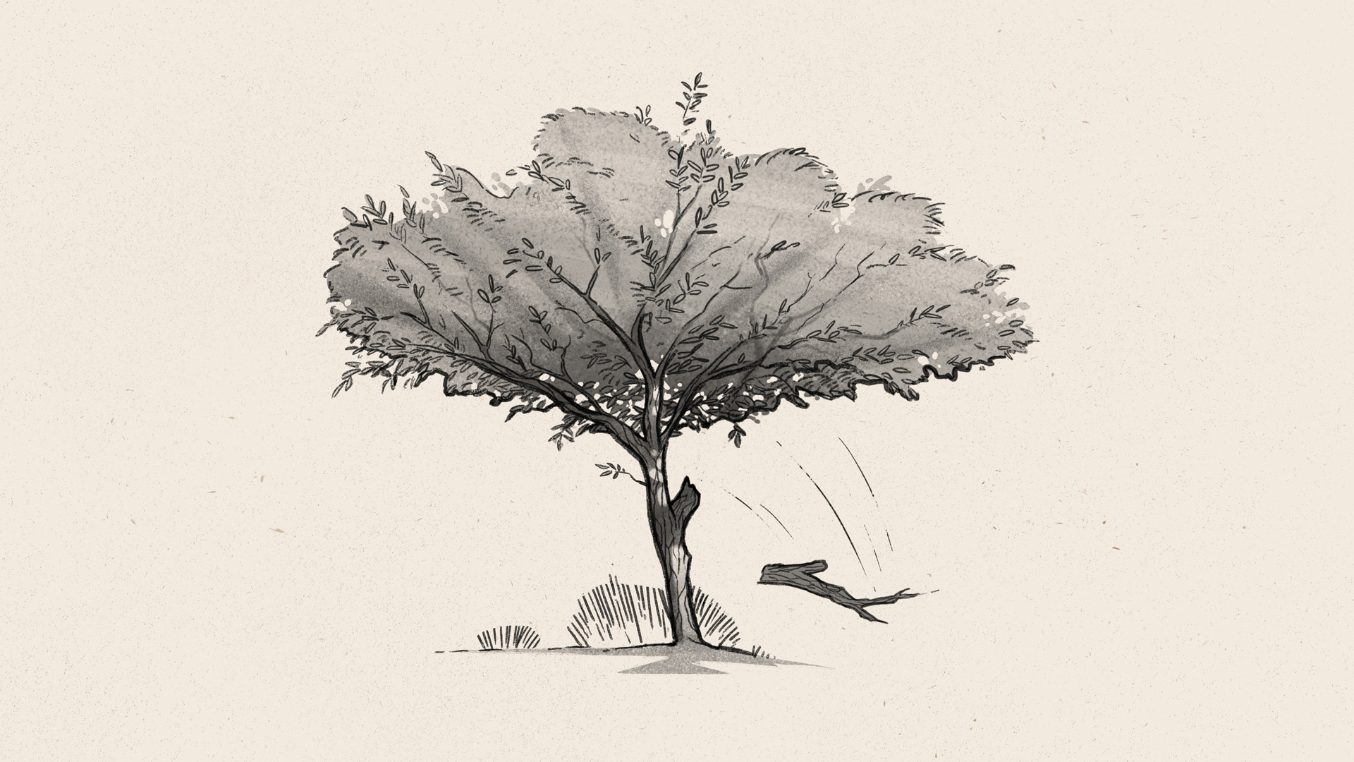LB_06_TREE_BRANCHFALLING